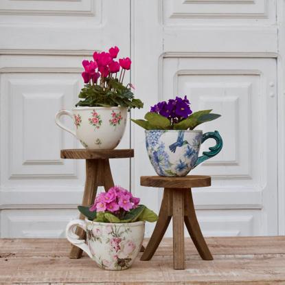 Imagem de Xícara de Violetas